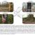 Retence jakožto integrovaný přístup v ochraně biodiverzity usilující o zachování souvislého lesního porostu v Evropě