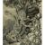 Obrázek 1. Rozrušování staré zdi kořeny stromu v ruinách Mayského města Kabah (Mexiko).
