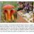 Úloha hub v biologii ochrany přírody
